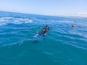ZAKA Diver Unit Survey Ocean Floor Coast of Israel